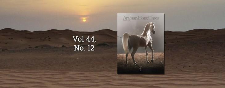 Cover Story: Al Maliik