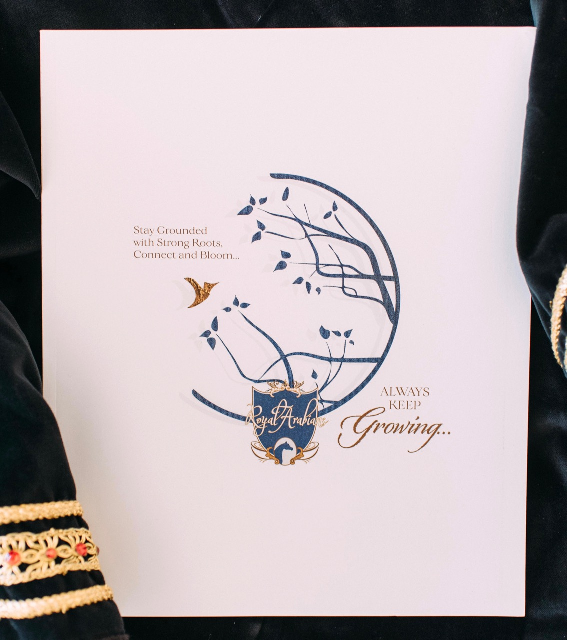 Brochure | Royal Arabians